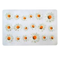 Plastové prostírání TORO 28x43cm květiny
