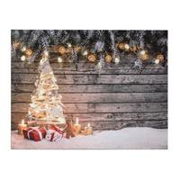 Svítící 3LED obraz 30x40cm TORO plátno, stromek