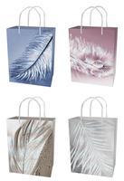 Papírová dárková taška TORO 23x18x10cm peří