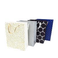 Papírová dárková taška TORO 23x18x10cm MIX motivů