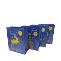 Papírová dárková taška TORO 23x18x10cm vánoční MIX