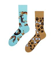 Veselé ponožky DEDOLES jezevčík 43-46