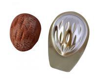 Formičky na cukroví - ořechy, 20 ks