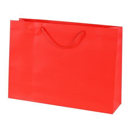 Papírová dárková taška TORO 44x31cm